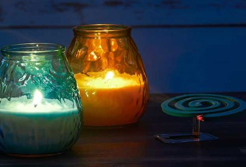 Citronella is a common ingredient in products made to repel mosquitoes.