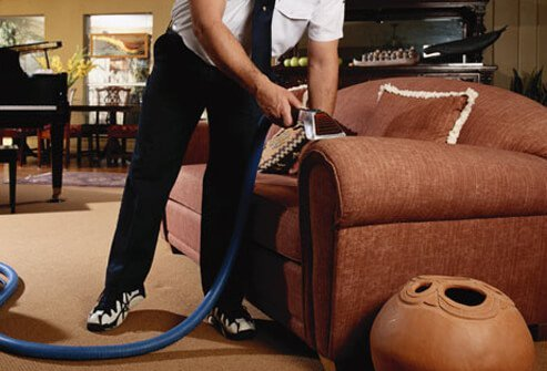 It helps get rid of dust mites in carpets and upholstered furniture.