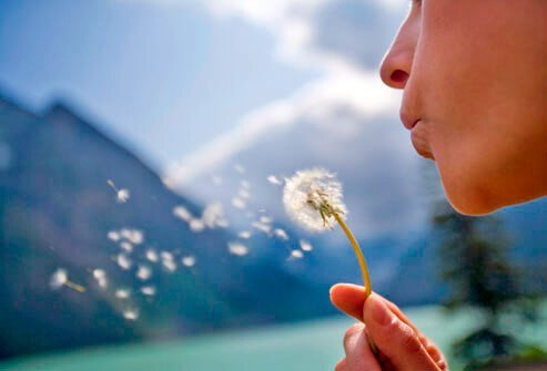 Nasal allergies can come from pet dander, dust mites, pollen, and other sources.