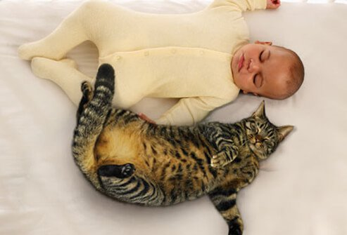 Baby sleeping with cat.