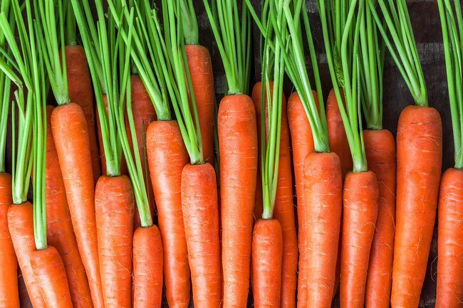 Trim the green tops off of carrots before you store them in the fridge.