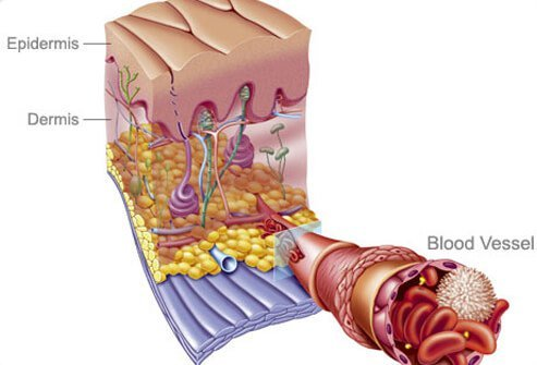 After you quit smoking, blood flow improves.