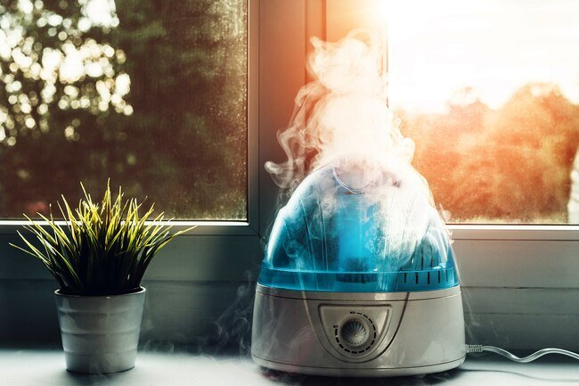 Fungus that may grow in humidifiers, air conditioners, or heating systems may affect your lungs.