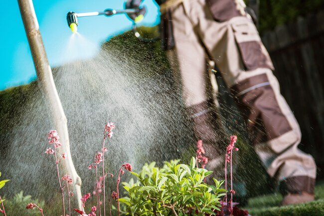 Pesticides may trigger asthma and COPD.