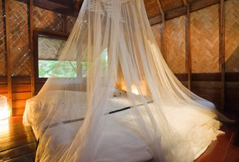 Photo of mosquito net over bed.