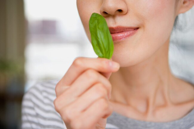 Your sense of taste and sense of smell and interconnected. When your sense of smell goes south, taste usually follows.