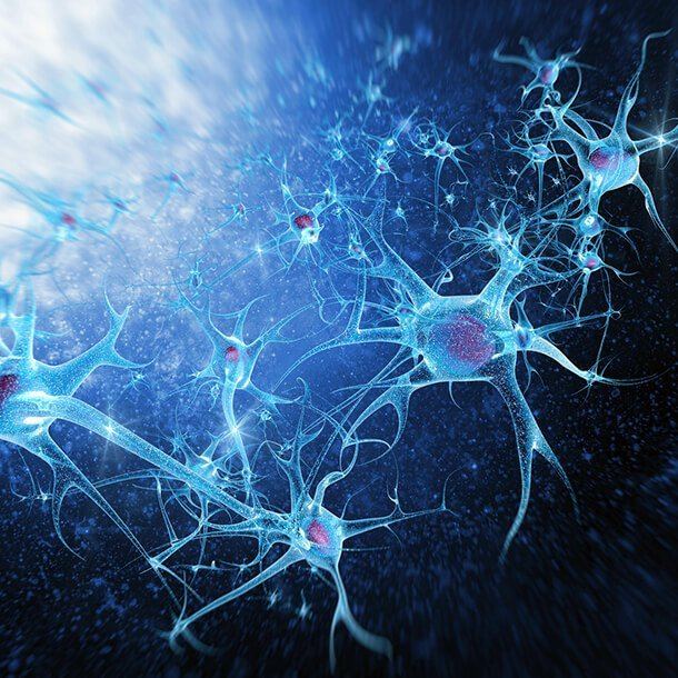 Multiplesclerosis (MS) may not be one of the more serious comorbidities when it comes to COVID-19, researchers in Italy suggest after evaluating a series of almost 250 people.