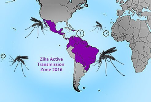 Current Zika virus active transmission zone according to the CDC.